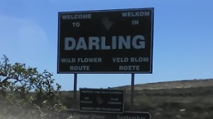 Welcome to Darling